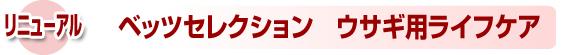 syusei_r10_c1