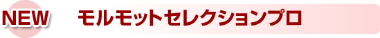 syusei_r4_c2