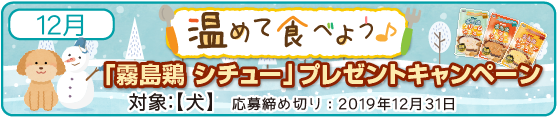 霧島鶏シチュー キャンペーン