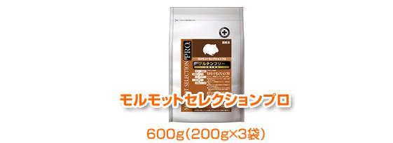 syusei_r3_c1