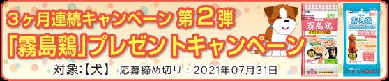 霧島鶏プレゼントキャンペーン